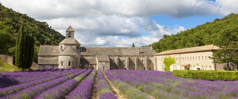 修道院开花的欧洲开花法国gordes淡紫色luberon普罗旺斯行senanque横谷 图库摄影