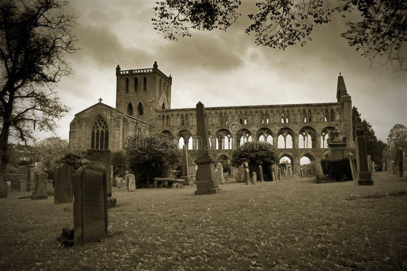 修道院有历史的jedburgh苏格兰 库存图片
