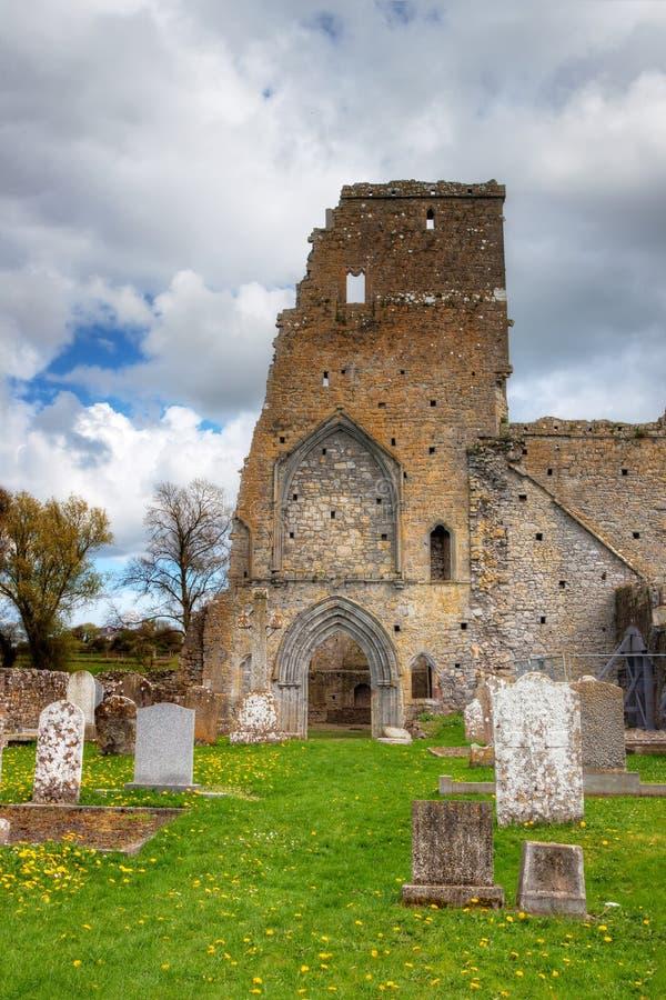 修道院爱尔兰废墟 库存照片