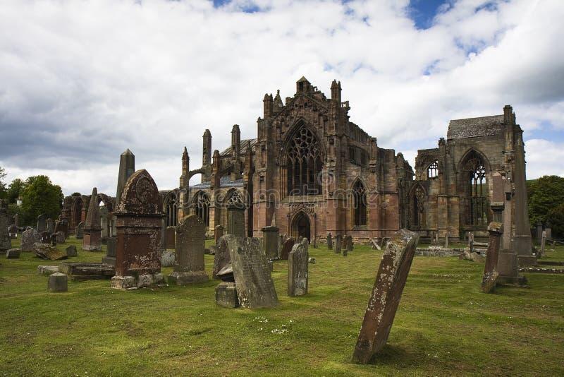修道院玫瑰花苏格兰 免版税库存图片