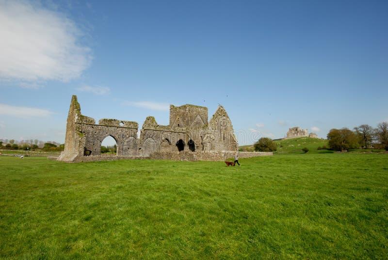 修道院cashel hore爱尔兰废墟 库存照片