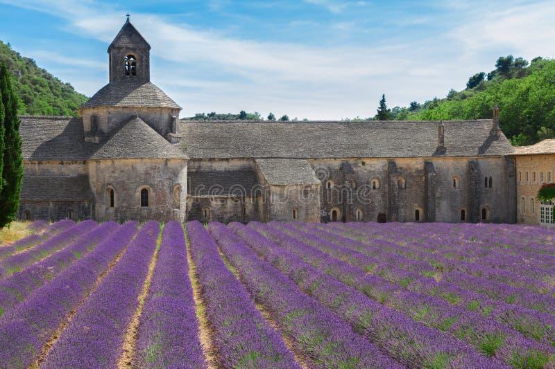 修道院Senanque和淡紫色领域,法国 库存照片