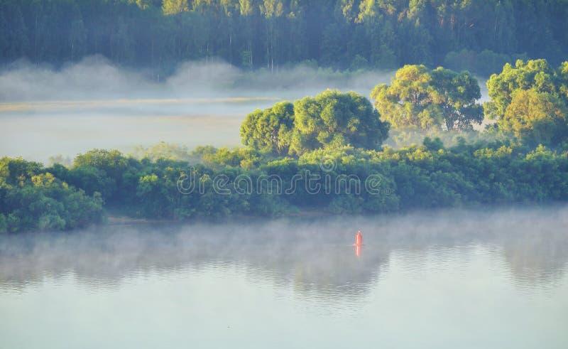 俯视图美丽如画的森林自然和河夏天风景  免版税库存图片