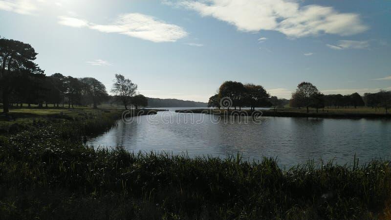 俯视塔顿公园自然保护的一个湖 免版税图库摄影