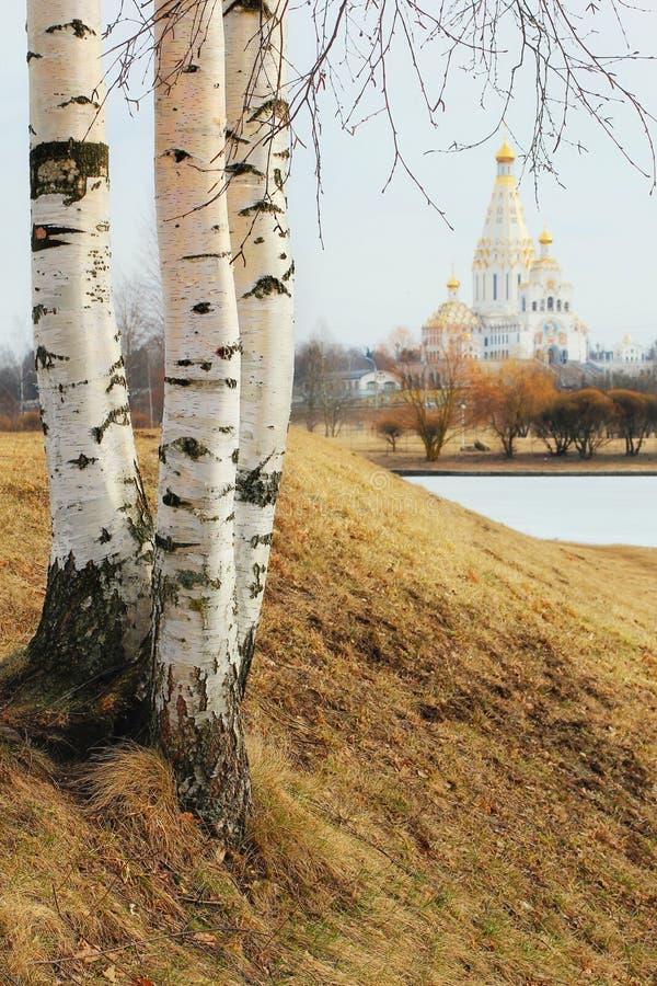 俯视教会的三桦树 免版税库存图片