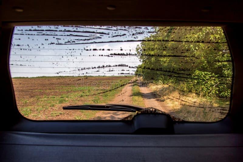 俯视路的肮脏的后方玻璃 库存图片