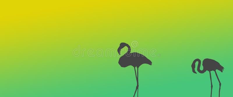 倒栽跳水背景鸟更加伟大的火鸟配对站立在边 向量例证