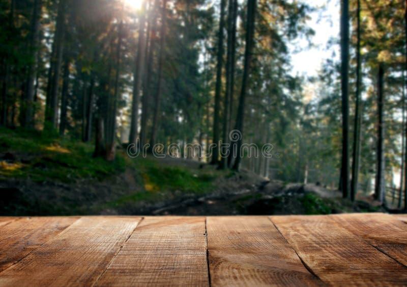 倒空木桌在森林的背景中 库存图片