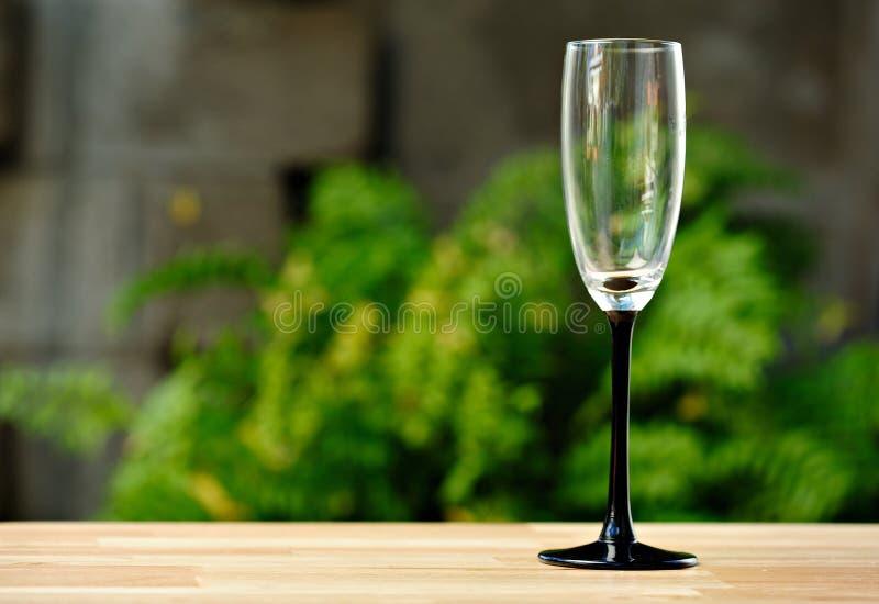 倒空玻璃酒 免版税库存照片