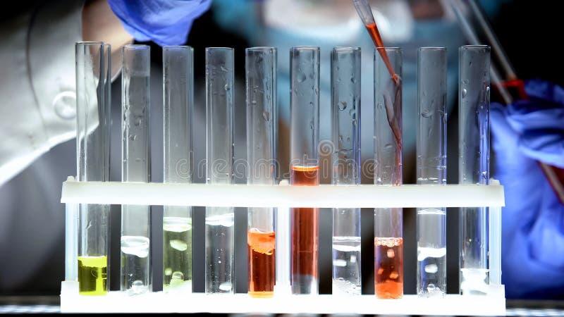 倾吐在试管的红色液体和检查反应,假疗程的化学家 图库摄影