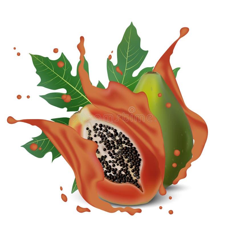 倾吐的汁液和落的番木瓜与叶子 番木瓜切spla 皇族释放例证