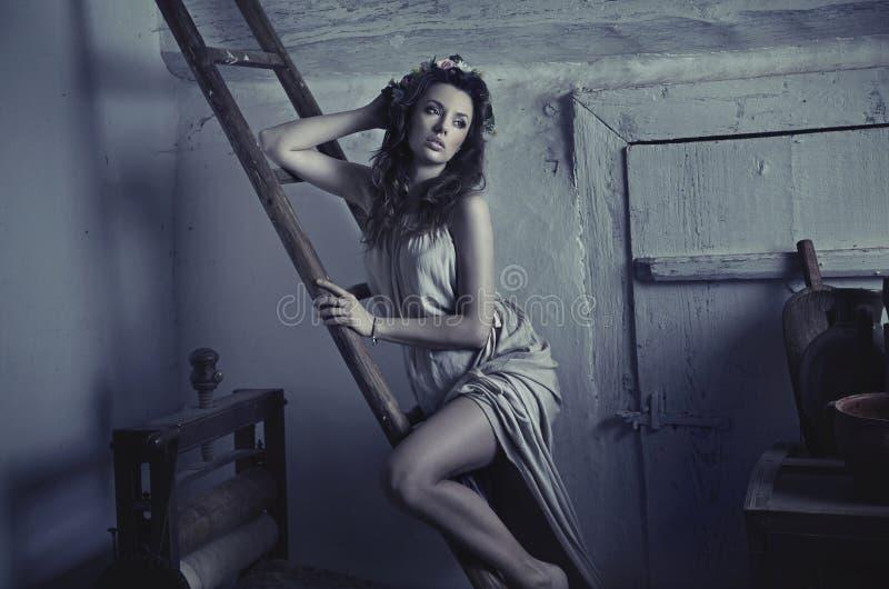 倾斜在木梯子的性感的逗人喜爱的夫人 免版税库存图片