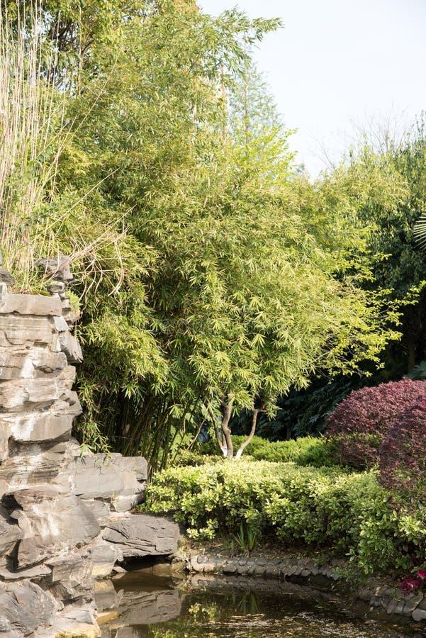 假山庭园石头和竹子 库存照片