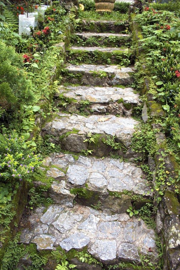 假山花园台阶 图库摄影