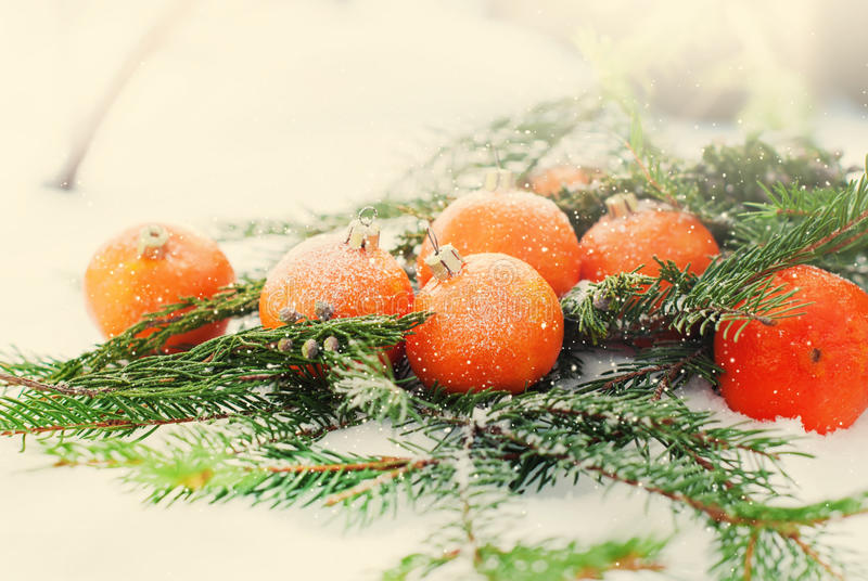 假日卡片用当冷杉木玩具装饰的蜜桔,被定调子 库存图片