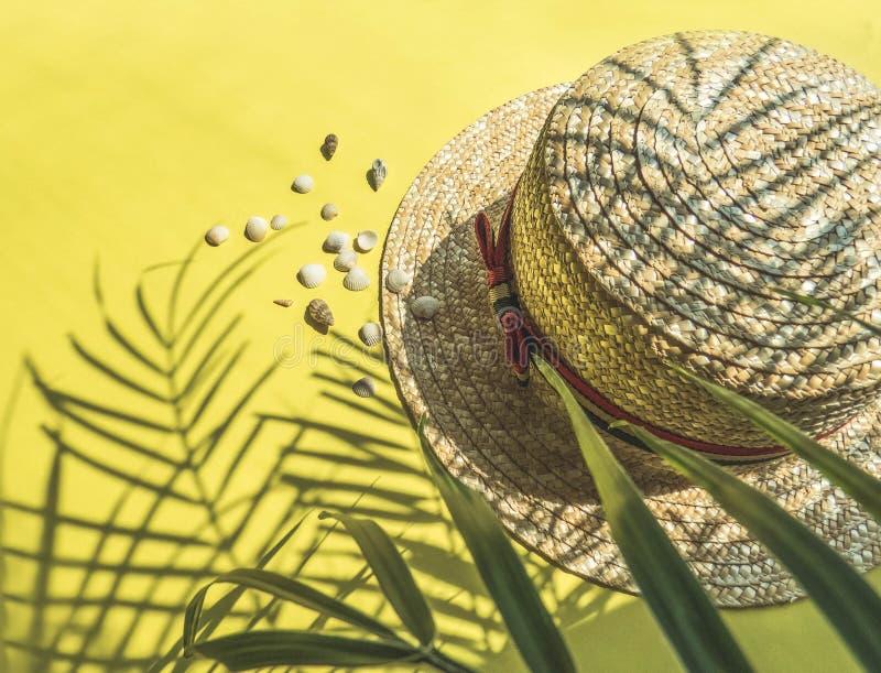 假日,假期热带海滩从上面-棕榈树离开和草帽 图库摄影