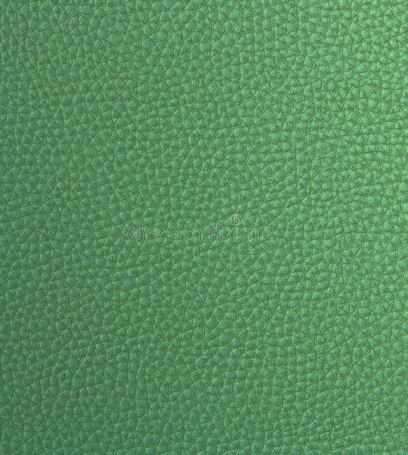 假绿色皮革光 库存图片