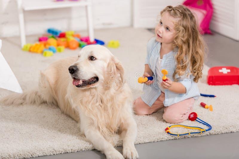 假装兽医和蓬松审查的金毛猎犬的可爱的孩子 免版税库存图片
