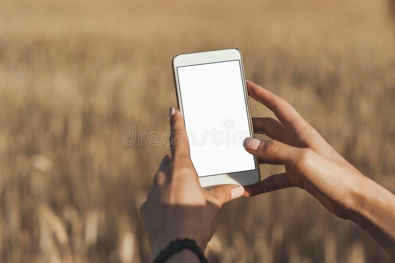 假装智能手机在女孩的手上,背景领域的 库存图片