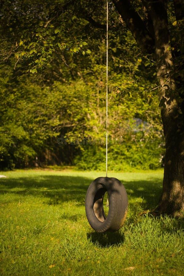 偏僻的摇摆轮胎 免版税图库摄影