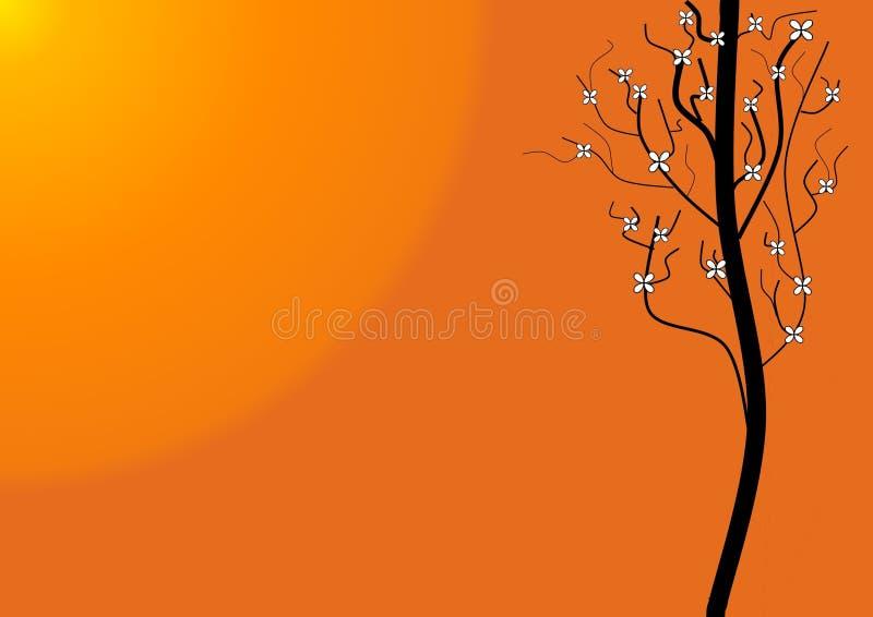 偏僻的星期日结构树 免版税库存照片
