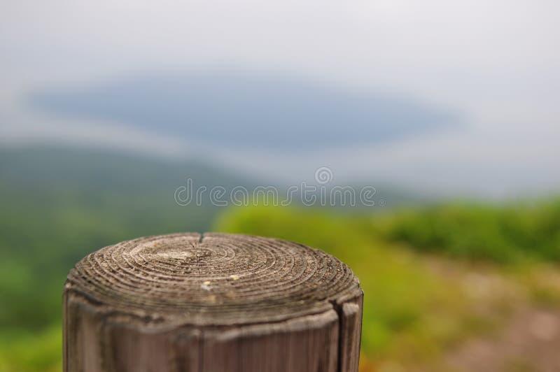 偏僻的木头在小山站立 免版税库存照片