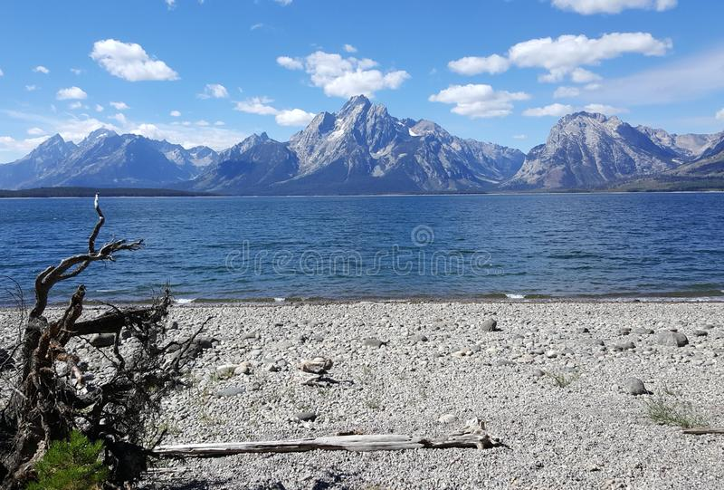 偏僻的海滩有Tetons的庄严看法 库存图片