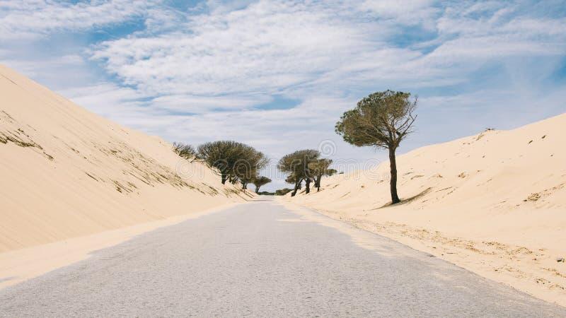 偏僻的路在卡迪士 免版税库存图片