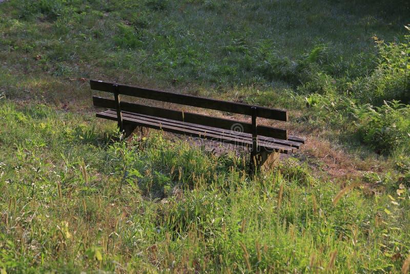 偏僻,空的长凳黑暗的木头,站立在草甸 免版税库存图片