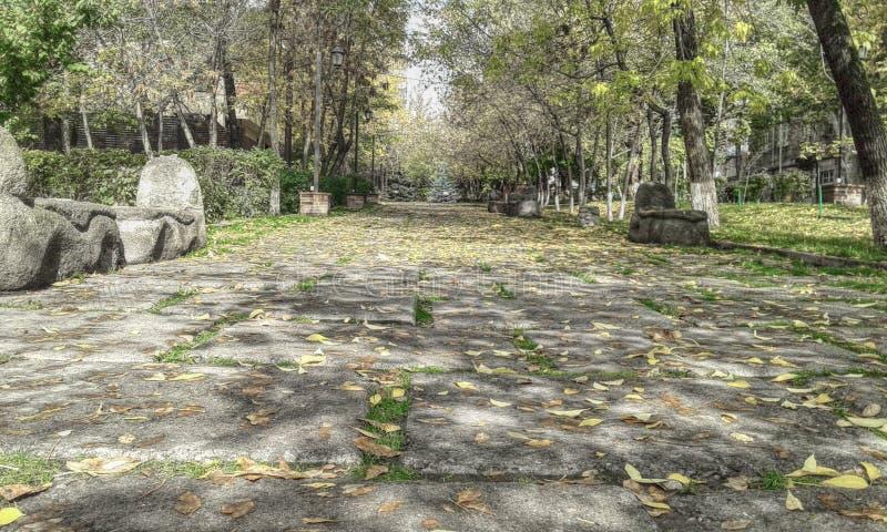 偏僻的公园 库存图片