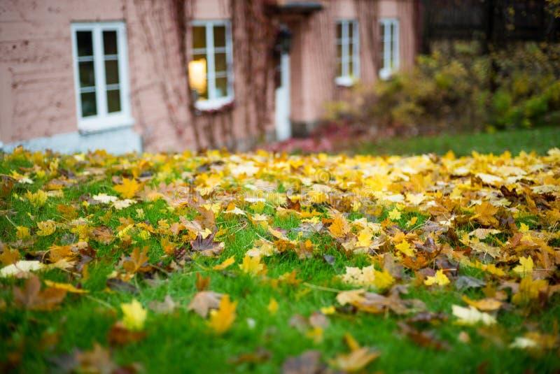 偏僻的房子在秋天公园 库存照片