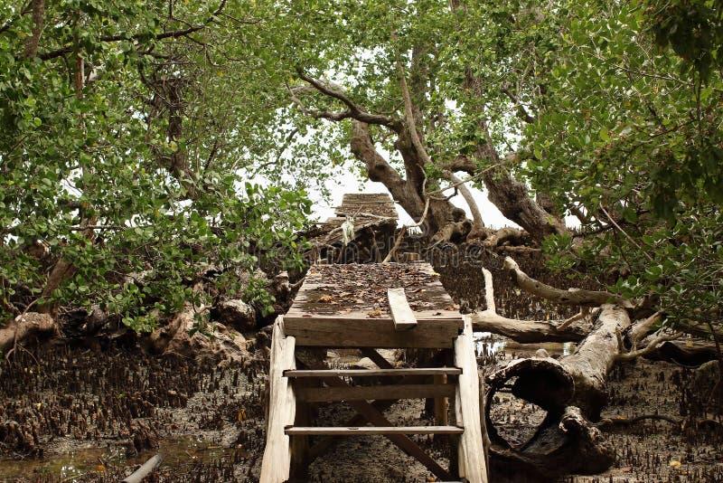 偏僻的打破的桥梁 免版税库存图片