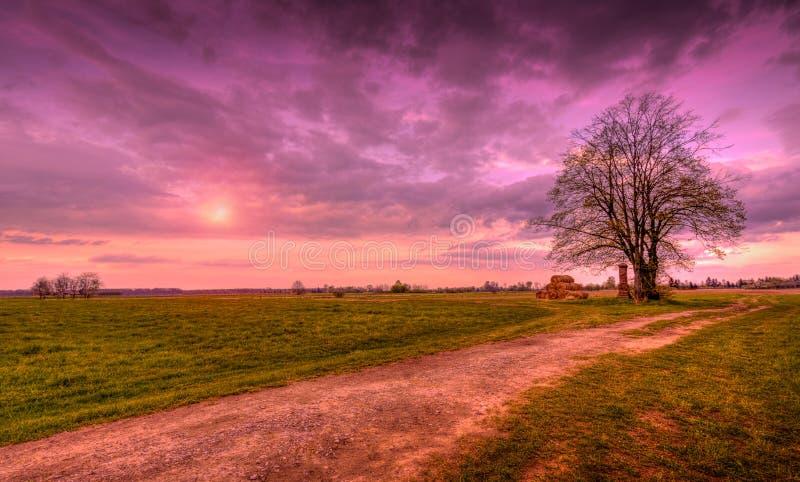 偏僻的树,干草堆乡下公路 库存图片