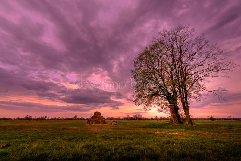 偏僻的树,干草堆日落 免版税库存照片