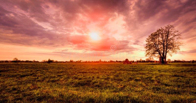 偏僻的树,干草堆日落 免版税图库摄影