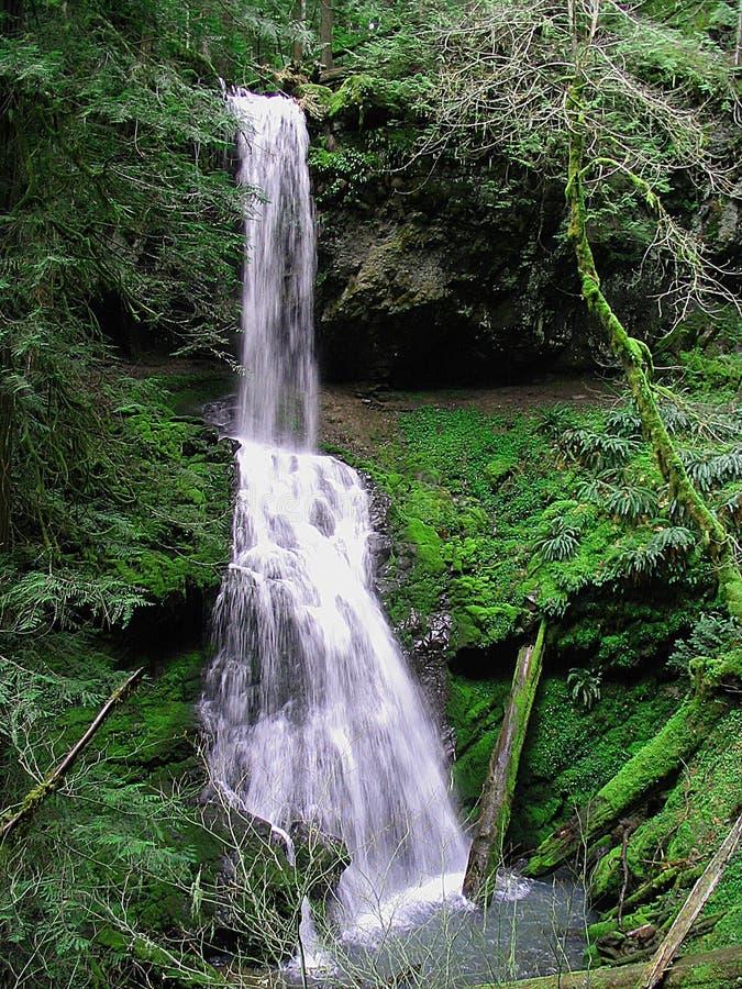 偏僻的瀑布 图库摄影