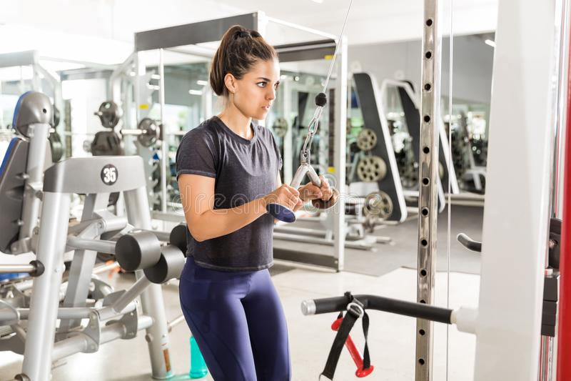 做三头肌在健身俱乐部的适合的妇女引伸锻炼 库存图片