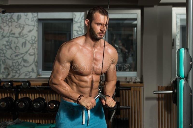 Download 做三头肌的男性爱好健美者重量级的锻炼 库存照片. 图片 包括有 亚伯・, 执行, 成熟, 顿断法, 成人 - 62535238