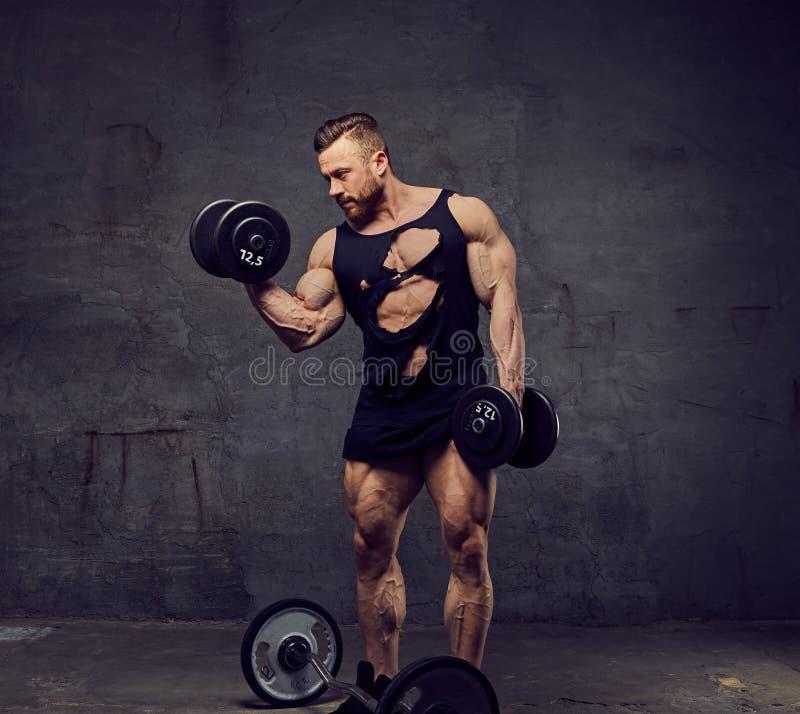 做与哑铃的肌肉,有胡子的男性二头肌锻炼 免版税库存图片