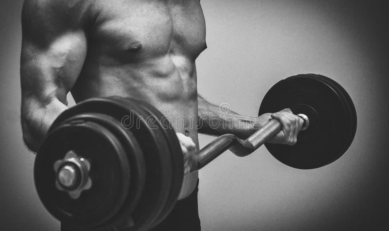 做与杠铃的肌肉男性模型锻炼 免版税库存图片