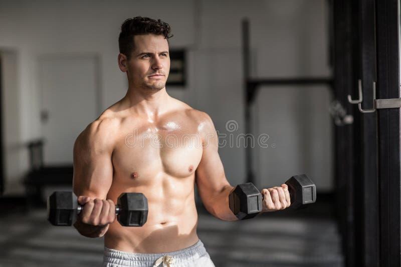 做举重的肌肉严肃的人 免版税图库摄影