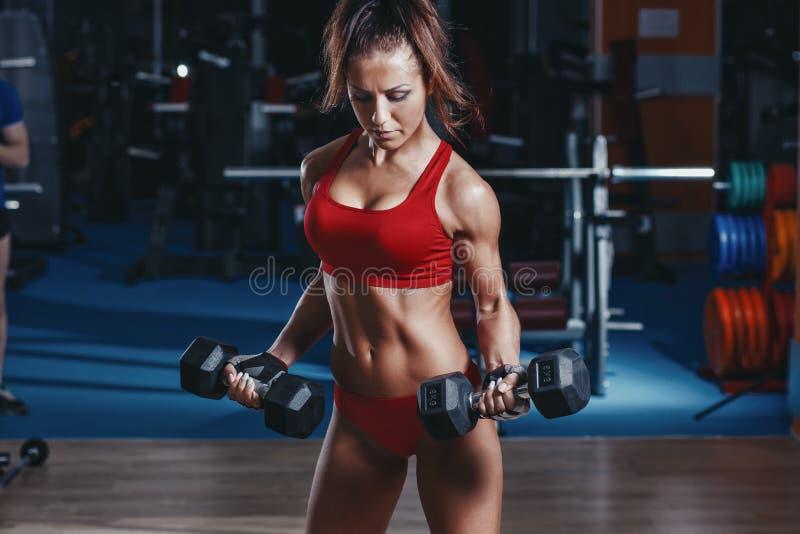 做二头肌哑铃的性感的年轻竞技女孩卷曲在长凳的锻炼在健身房 免版税库存图片