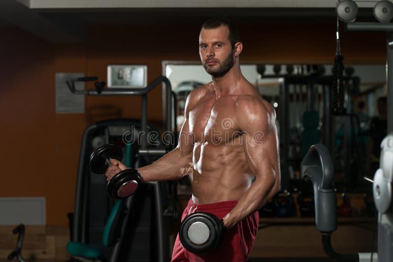 Download 做二头肌的健康年轻人锻炼 库存图片. 图片 包括有 种族, 体质, 有吸引力的, 亚伯・, 哑铃, 运动员 - 62533333