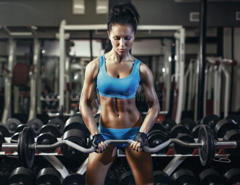 做二头肌的健身房的年轻性感的深色的女孩行使与杠铃 库存图片