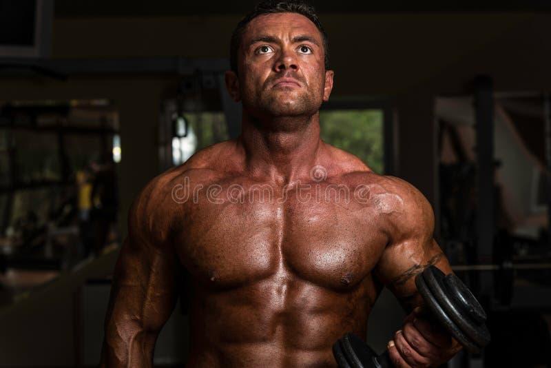 做二头肌的爱好健美者重量级的锻炼与哑铃 库存照片