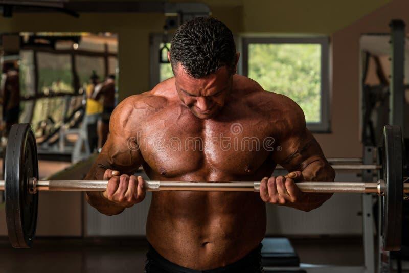 做二头肌的爱好健美者重量级的锻炼与杠铃 库存图片