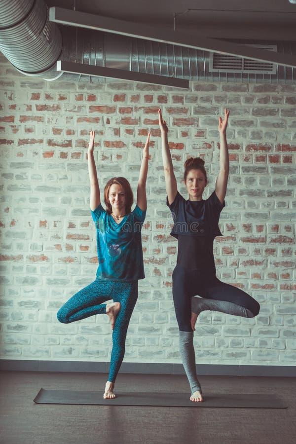 做伙伴瑜伽的两美女在砖墙对面的瑜伽演播室 库存照片