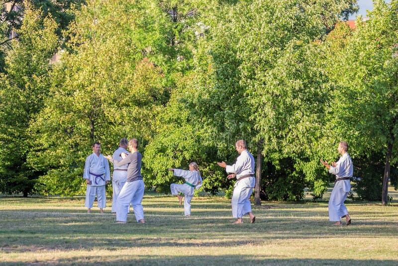 做体育,训练空手道的人们,在著名布拉格公园Letna在中心 免版税图库摄影