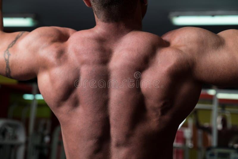 做后面的爱好健美者锻炼 免版税库存照片