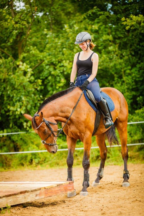 做在乡下草甸的骑师女孩马骑术 图库摄影